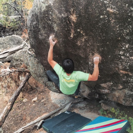 Michael Madsen moves into the Crux of Ante Up V9